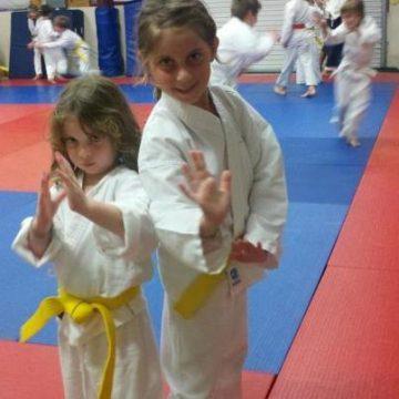 Kids Aikido snapshot