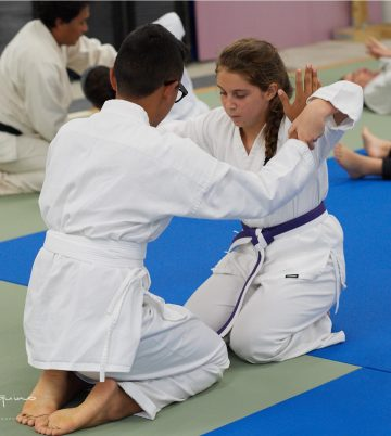 youth join in aikido seminar for all ages